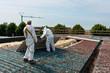 Asbestos removal - 48282820