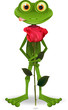 frog with rose