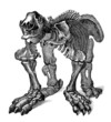 Prehistory/Paleontology - Skeleton : Megatherium