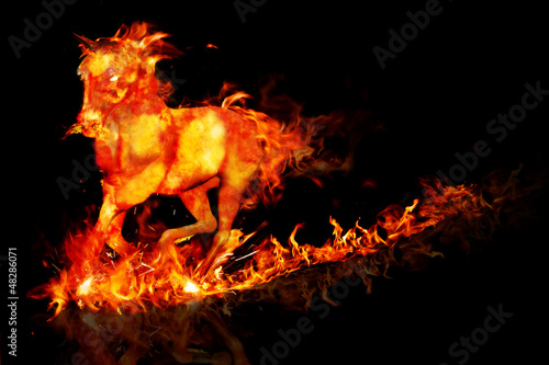 Fire horse running on a reflective surface