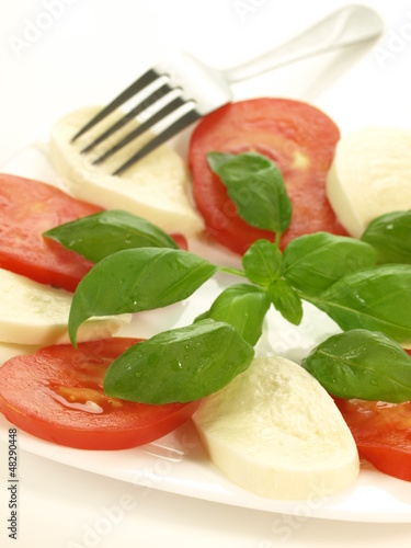 Portion of caprese, closeup, isolated