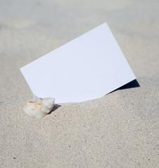 Karte mit Textfeld am Sandstrand mit Muschel
