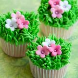 Fototapety Flower garden cupcakes