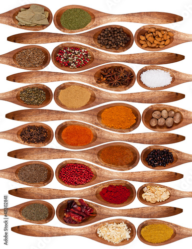 Concept with spices on wooden spoons on white background - 48302841