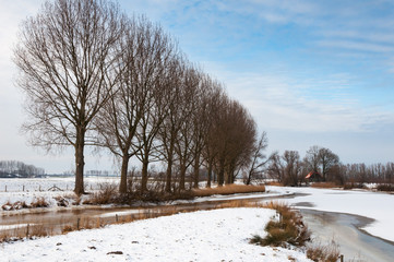 Rural winter landscape in the Netherlands
