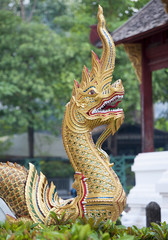 Ornate golden dragon