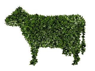Mucca, agricoltura biologica, verde, ecologia, allevamento
