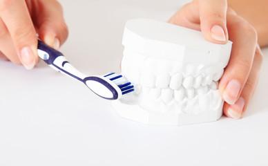 Richtige Technik des Zähneputzens