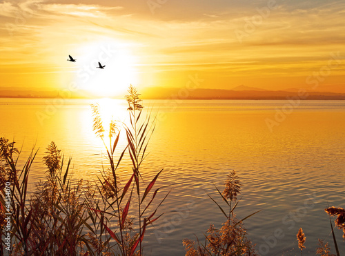Poster partiendo el sol