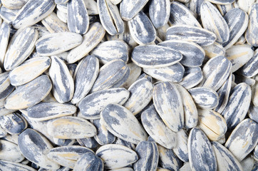 Sunflower seeds texture