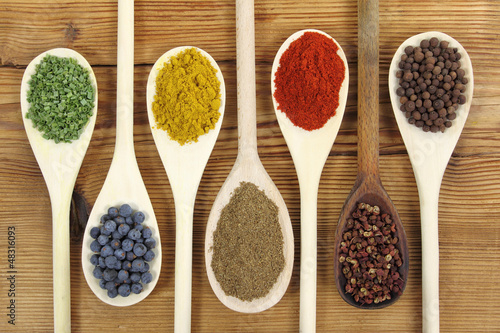 Spices - 48316093