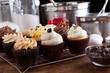 Variety of Gourmet Cupcakes - 48316265