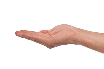 Open palm hand gesture of male hand