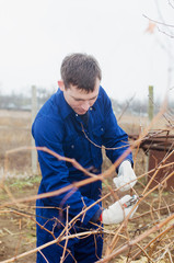 Young man pruning vine branch
