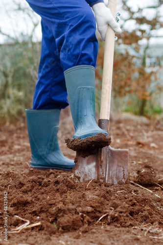 Close up of a digging