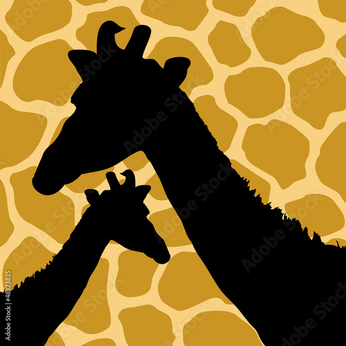 Giraffe Hide Pattern with Giraffes