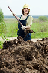 farmer spreads manure at field
