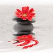 Galets et gerbera reflet zen