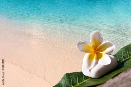 Fototapeten,strand,wasser,blau,türkis