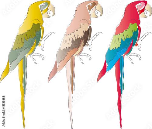 Ara - Papagei - Tropen - Urlaub - Logo
