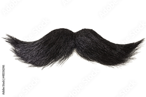 Curly moustache isolated on white