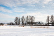 Snowy Dutch winter landscape