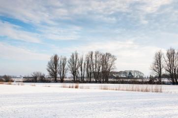 Snowy Dutch winter landscape