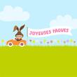 "Bunny In Meadow Driving Car Banner ""Joyeuses Pâques"""