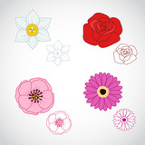 Flower Lineart Set 4
