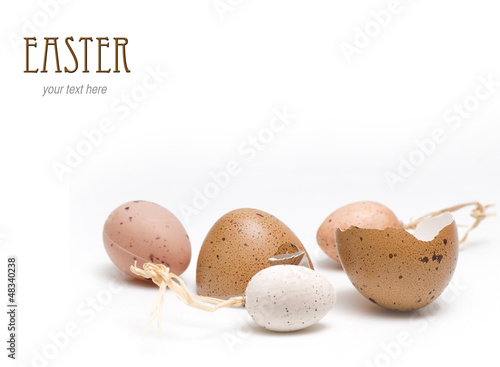 Easter egg broken with little eggs isolated on white