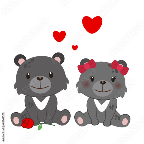 illustration of a pair of Formosan black bear