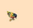 retro tin bird
