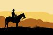 Vaquero en el desierto