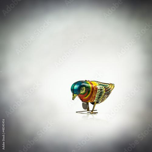 tin bird