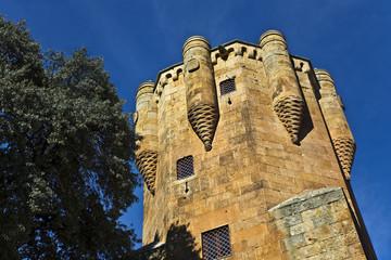 Torre del Clavero. Salamanca.