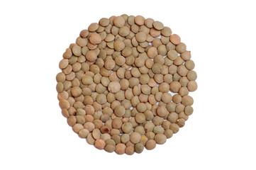 Lentils Isolated on White Background