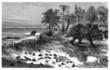 Prehistoric Landscape : Cretaceus Period