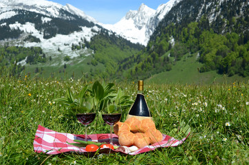 Wine and vegetables served at picnic. Switzerland