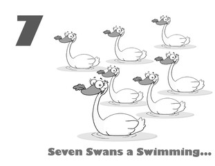 Black And White Number Seven And Text By Swimming Swans