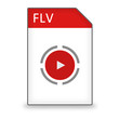 Dateityp Icon FLV