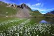 paysage alpin - haute tarentaise