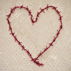 heart-shaped barbed wire