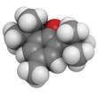 Butylated hydroxytoluene (BHT) molecule, chemical structure.