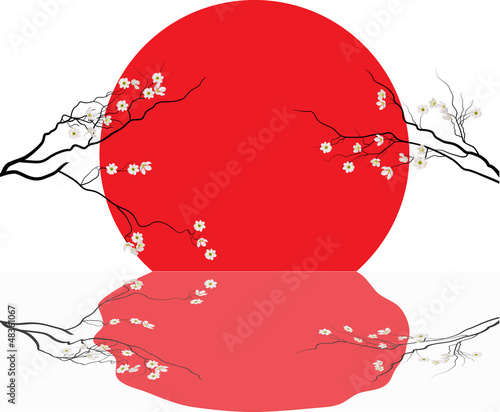 Plakat cherry tree flowers and red sun with reflection