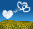 heart shape clouds above dandelion field