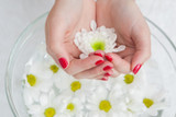 Close up of hands in bowl with flowers - 48364619