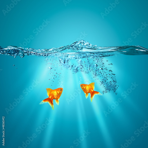 Funny underwater backgrounds for your design