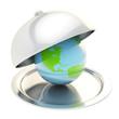 Earth globe on ceramic salver under a chrome food cover