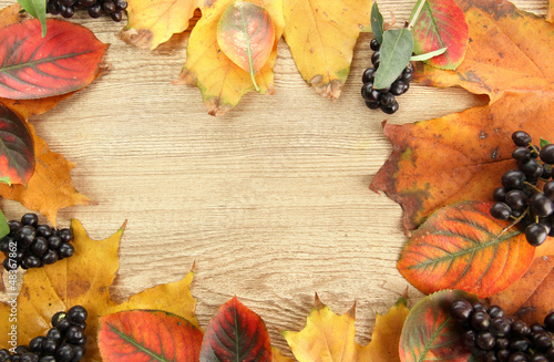 bright autumn leaves and wild berries, on wooden background
