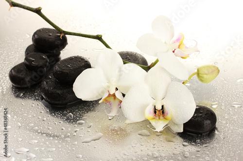 zdrojow-kamienie-i-storczykowi-kwiaty-odizolowywajacy-na-bielu
